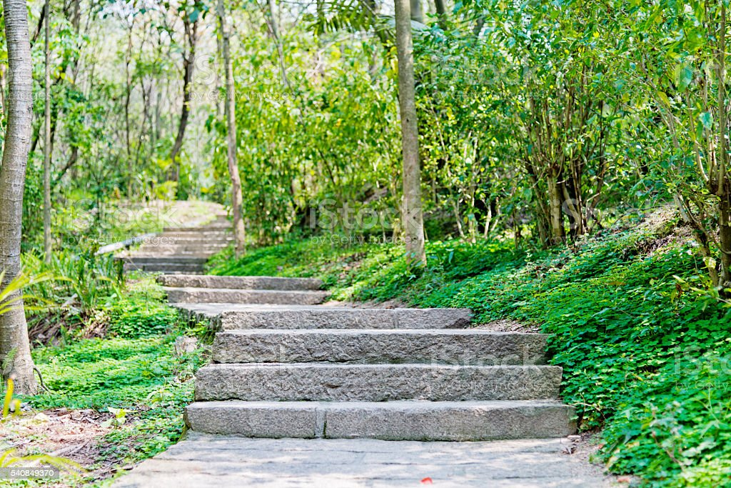 Garden with stairs stock photo