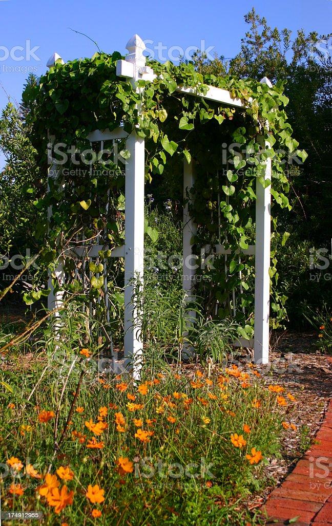 Garden with Trellis stock photo