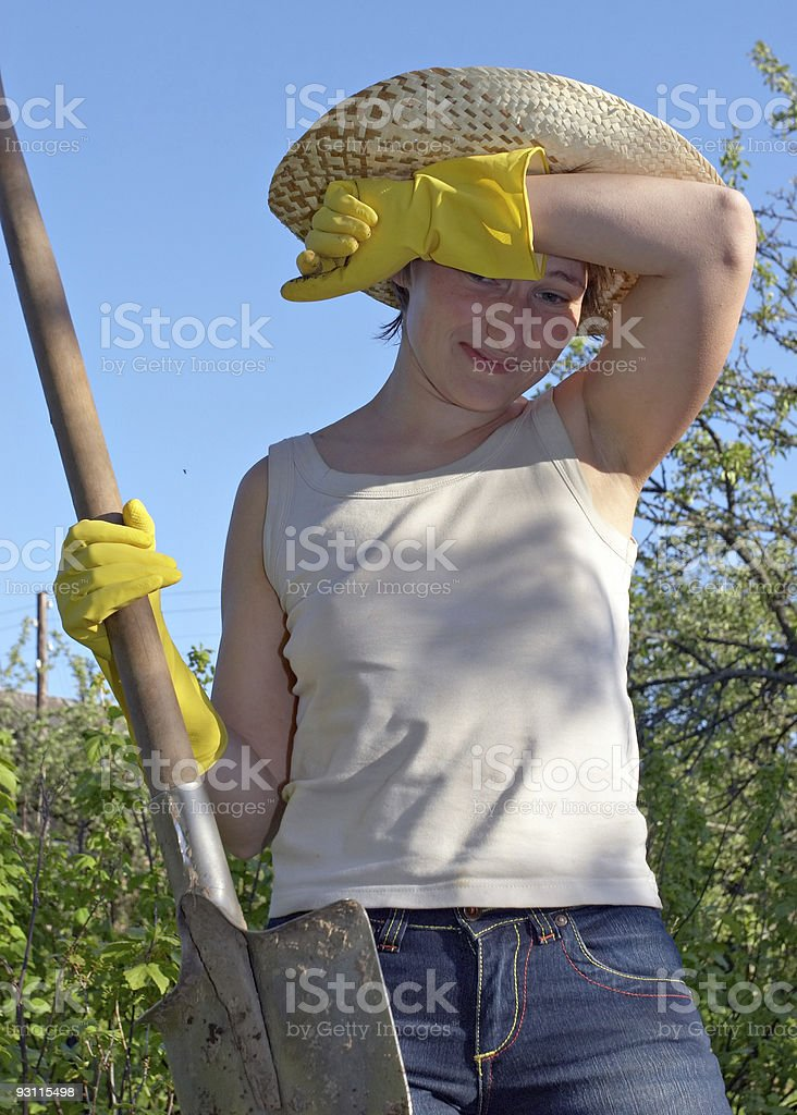 garden work royalty-free stock photo