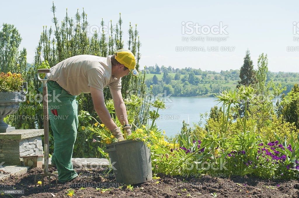 Gardener at Island Mainau - Lake Constance, Germany stock photo