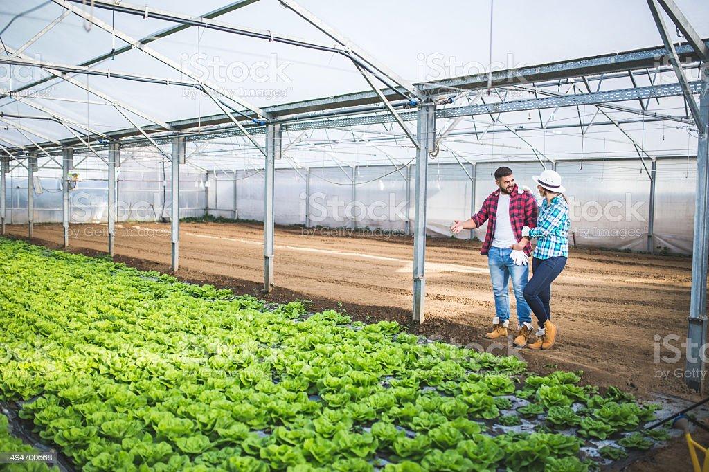 Gardener couple running small business stock photo