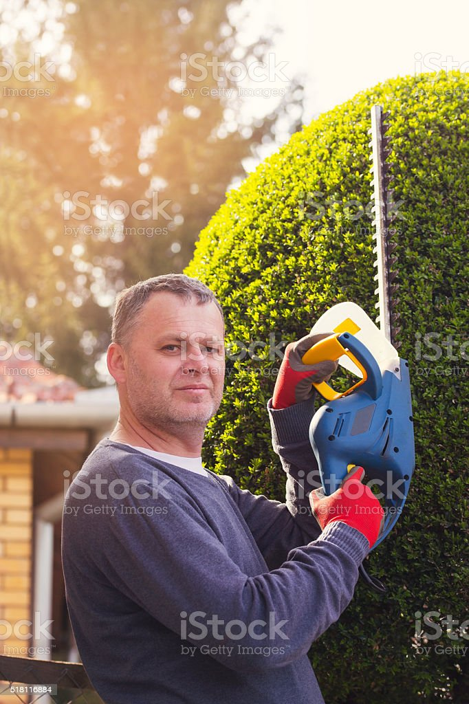 Gardener cutting a hedge with a hedge cutter stock photo