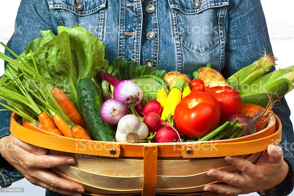 Gardener Farmer Holding a Harvest Basket of Fresh Vegetable stock photo