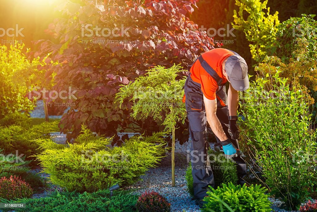 Gardener Garden Works stock photo