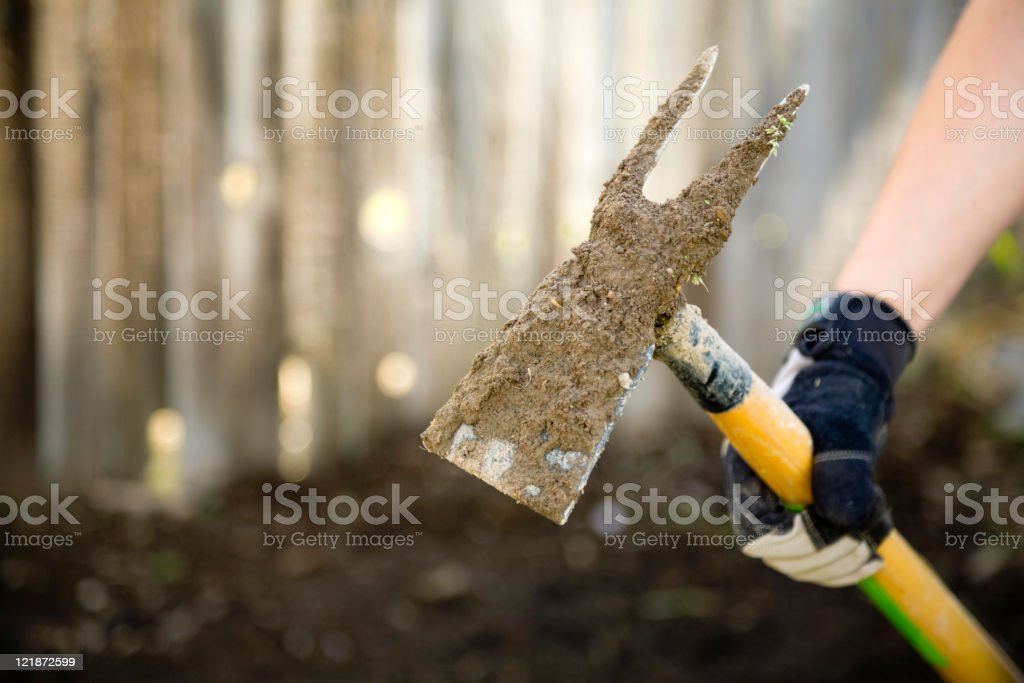 Gardener Hand Close-up royalty-free stock photo