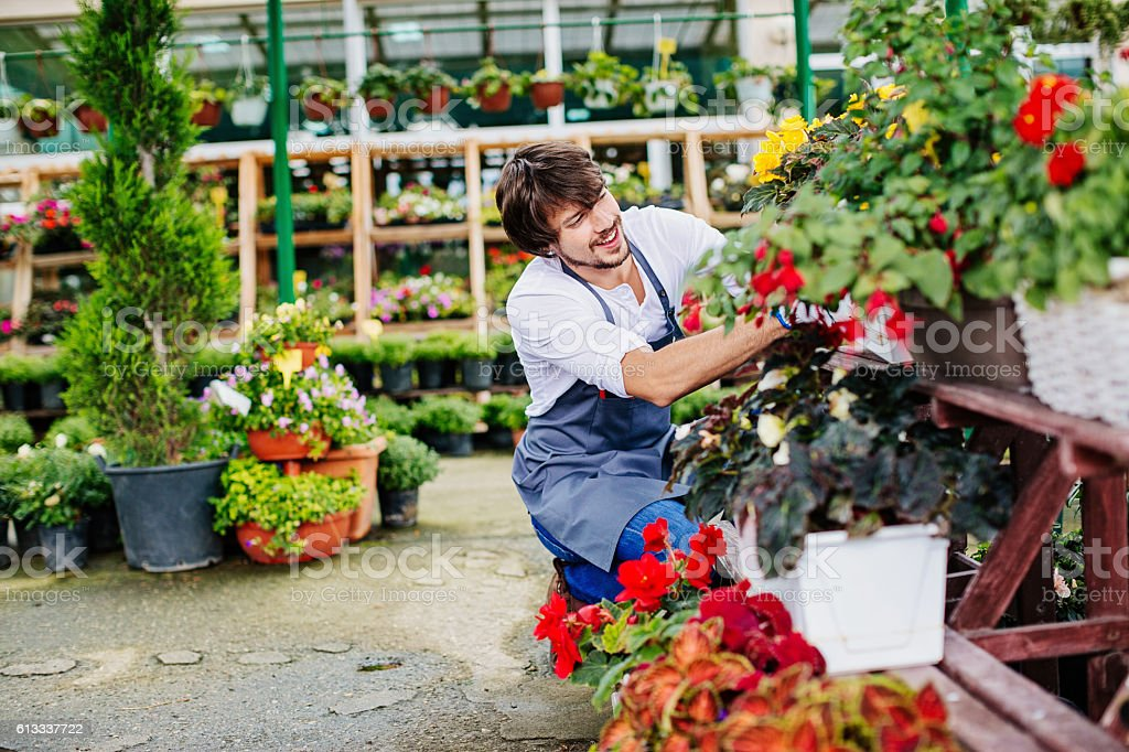 Gardener in a flower nursery stock photo