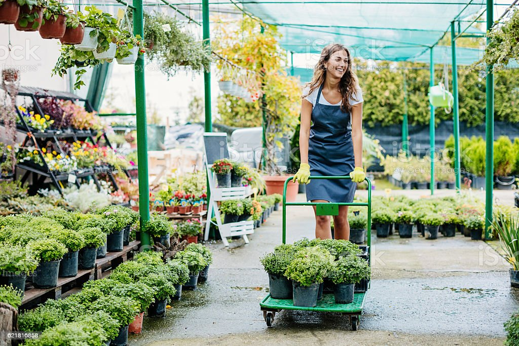Gardener pushing a cart with potted plants stock photo