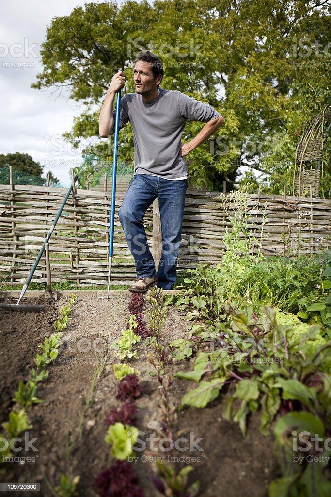 Gardener Rests in Vegetable Garden royalty-free stock photo