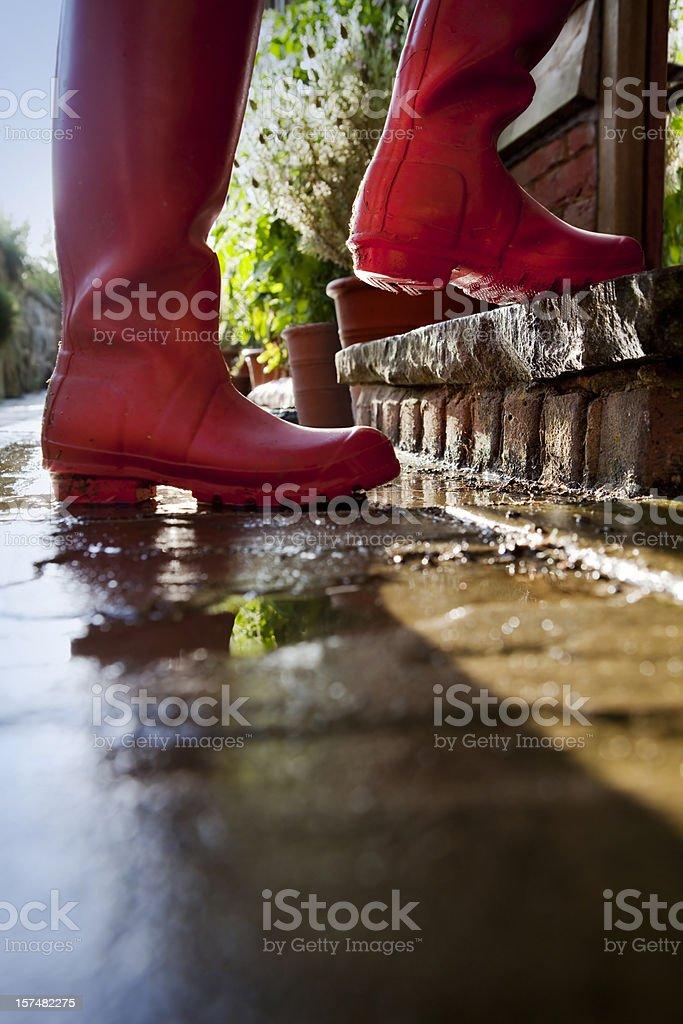Gardener Stepping Into Greenhouse stock photo