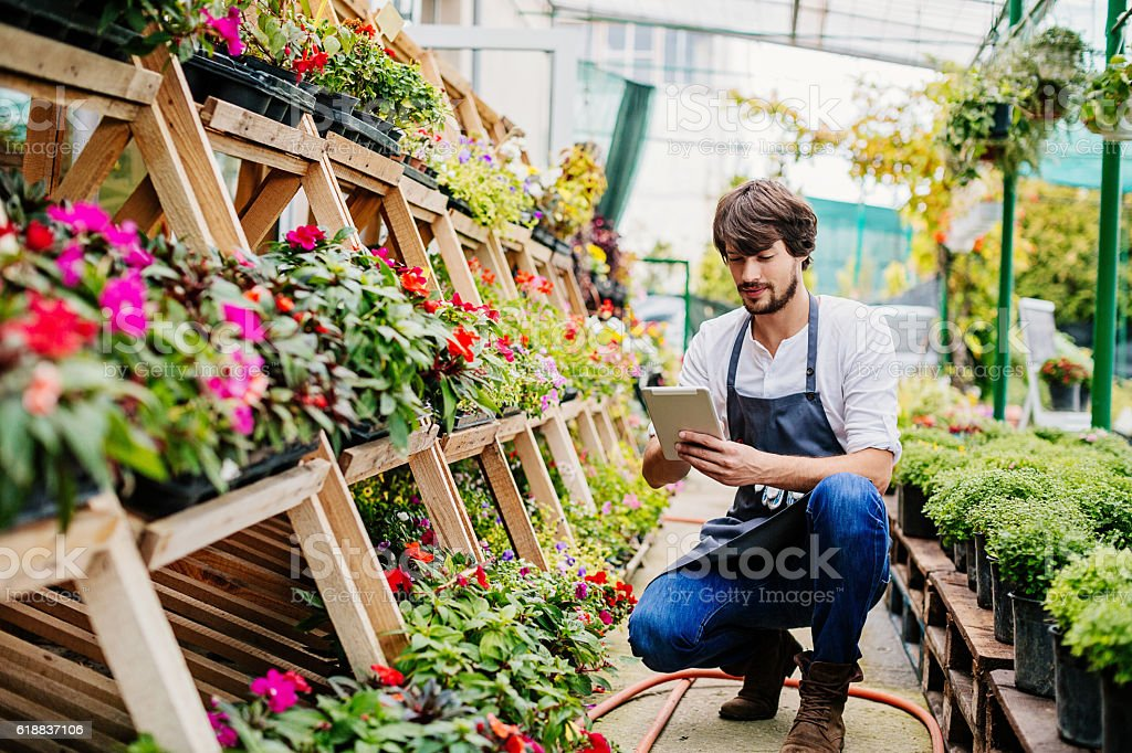 Gardener with digital tablet stock photo