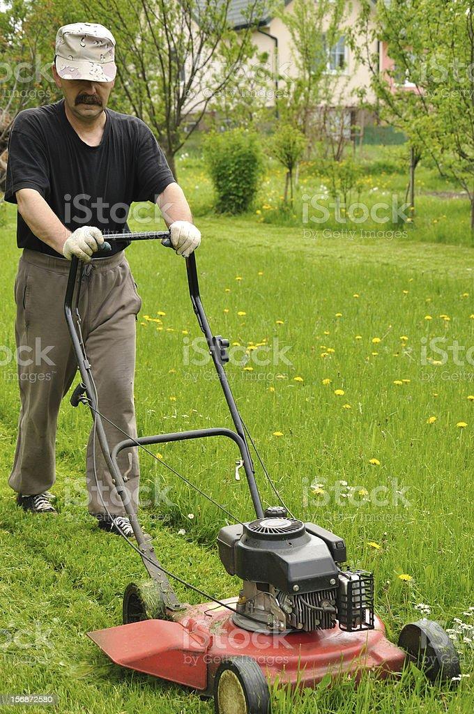 Gardener with lawnmower stock photo
