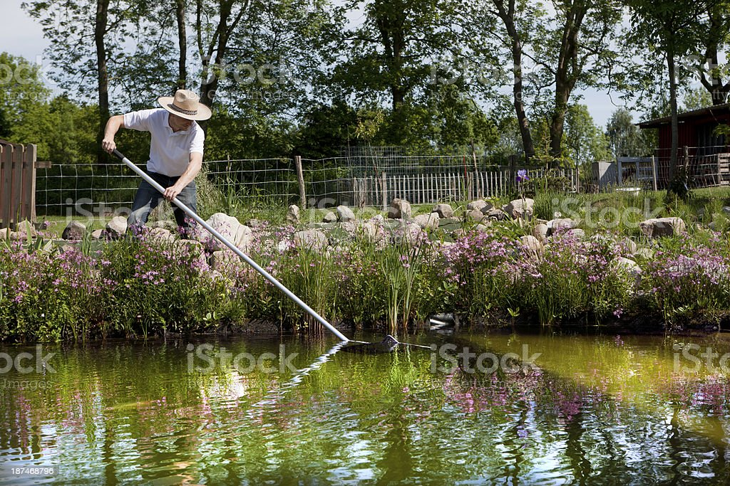 gardener with straw hat cleans pond stock photo