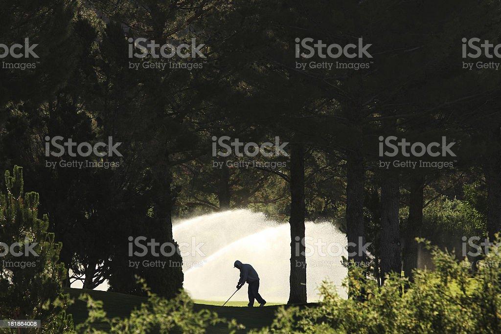 Gardener Worker Silhouette Irrigation Sprinkler stock photo