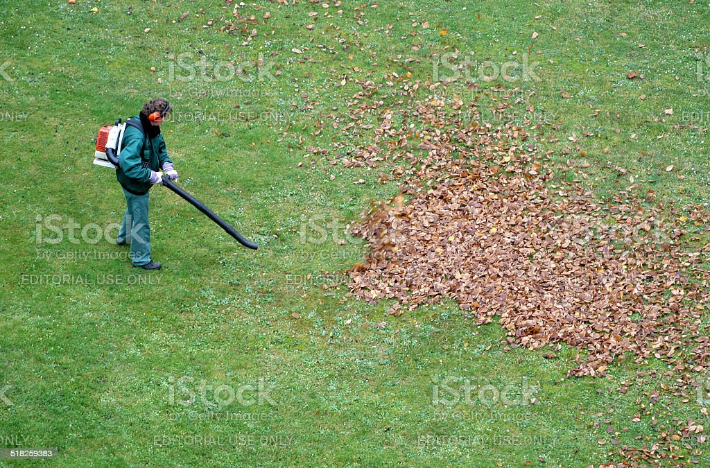 gardener works with leaf blower stock photo