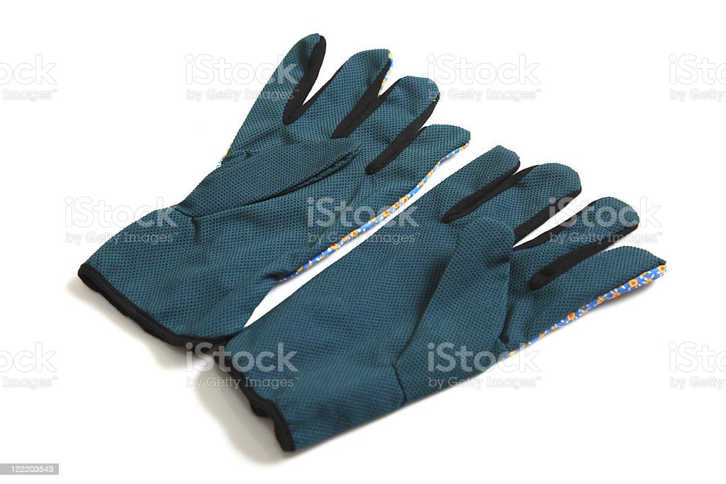 Gardener's gloves XXl royalty-free stock photo