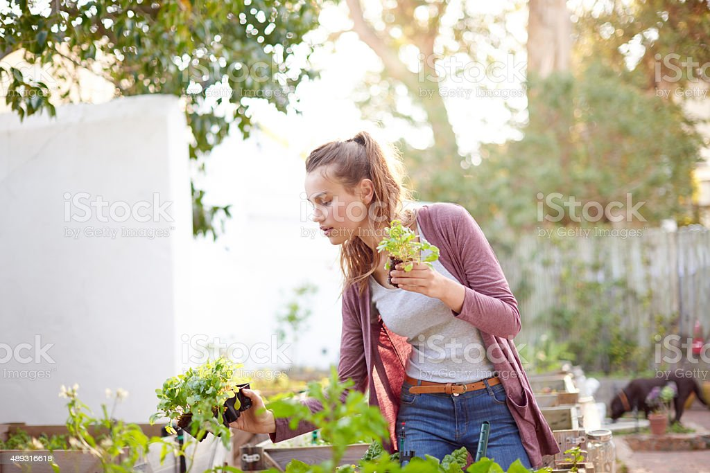 Gardeners know all the dirt stock photo