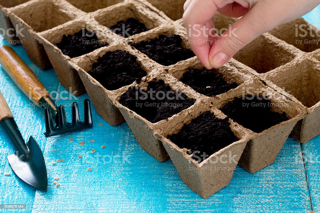 Gardening and landscaping - preparation for planting seeds stock photo