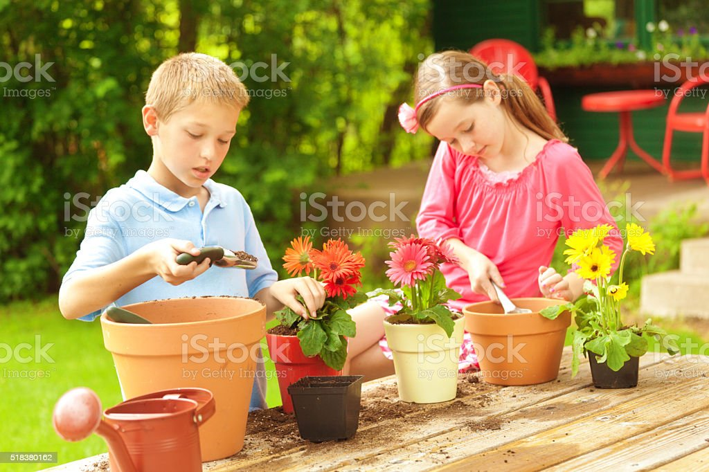 Gardening and Planting for Children stock photo