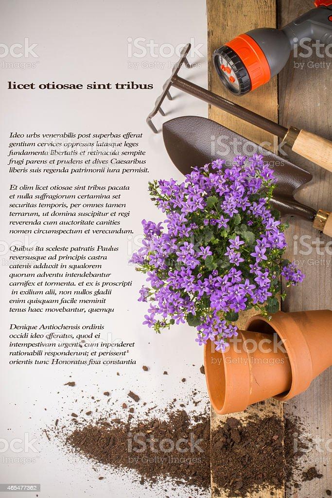 gardening background stock photo