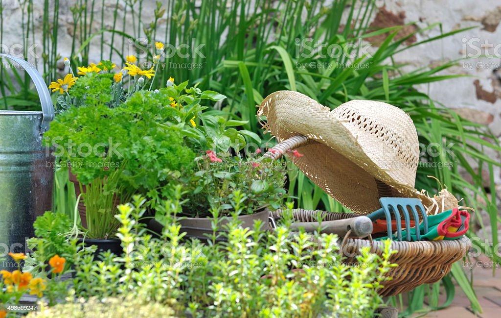 gardening basket stock photo