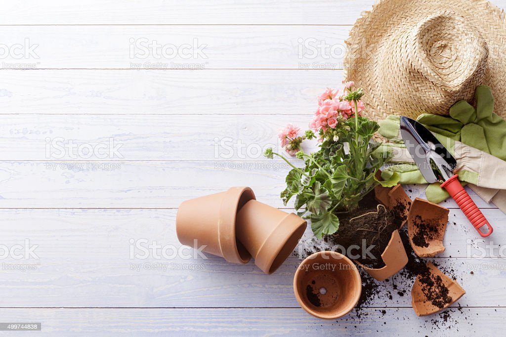 Gardening: Broken Plant Pot and Gardening Equipment stock photo