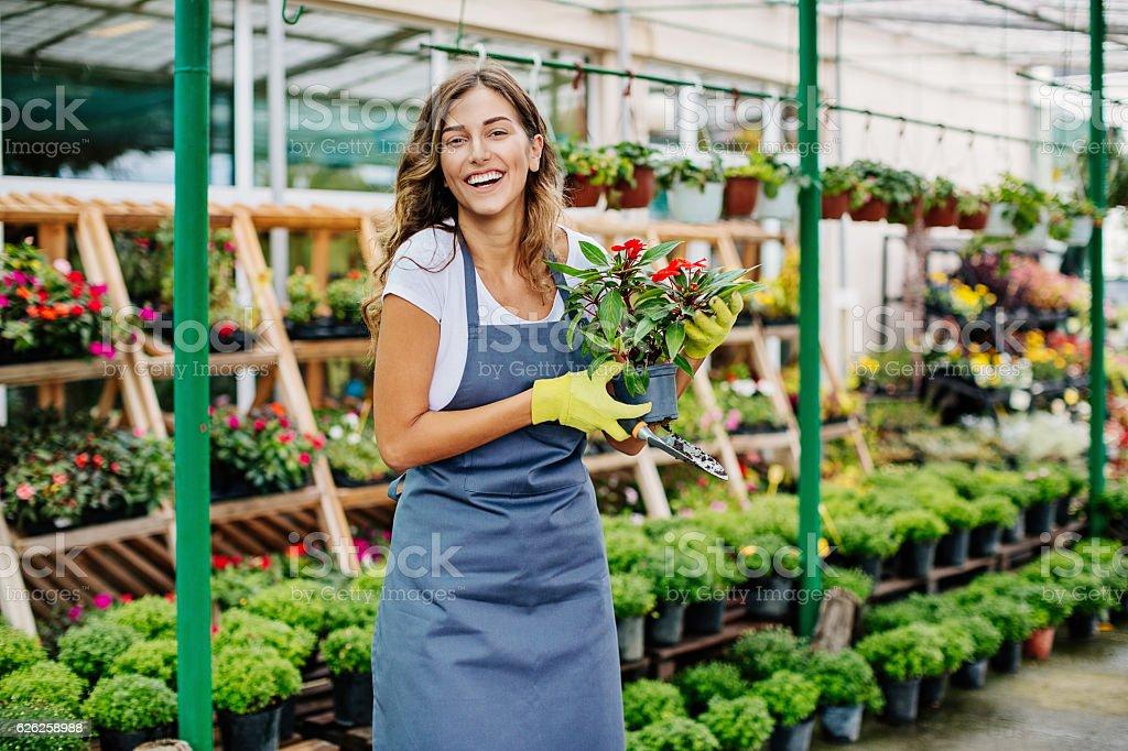 Gardening business stock photo