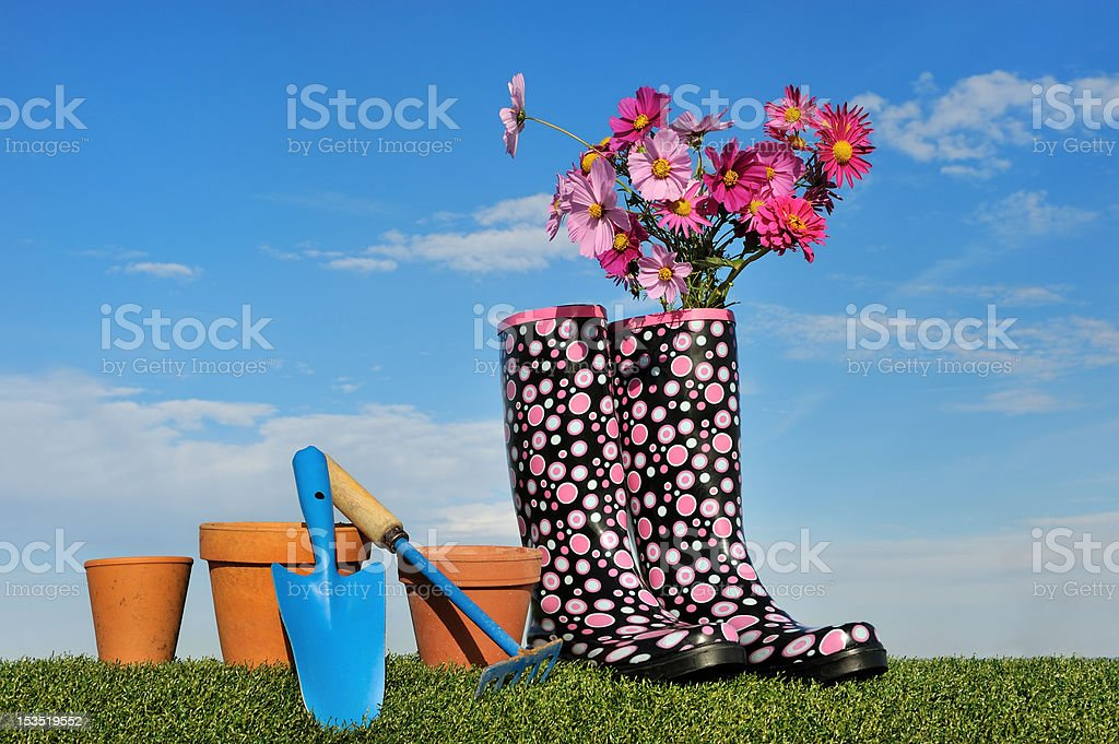 Gardening concept four royalty-free stock photo