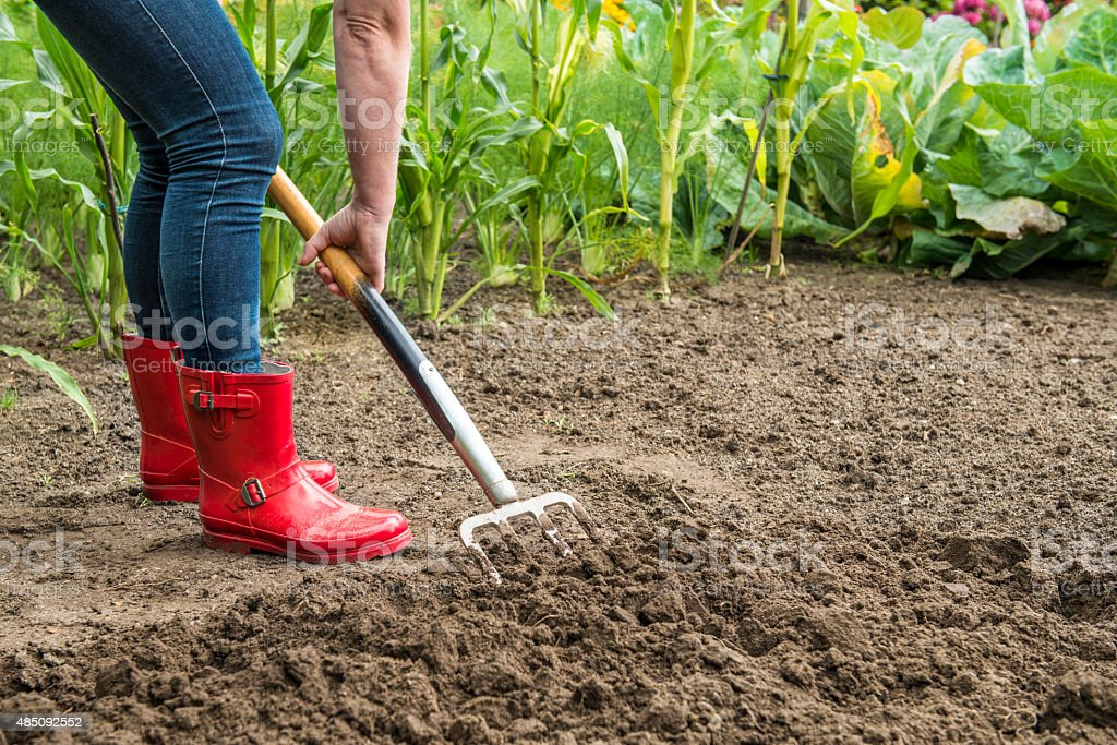 Gardening - digging with a fork stock photo