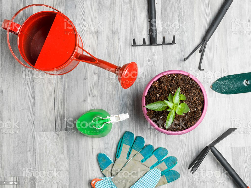 Gardening Equipments On The Gray Wooden Floor stock photo