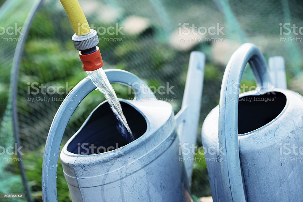 Gardening, fill watering can of water for watering the plants royalty-free stock photo