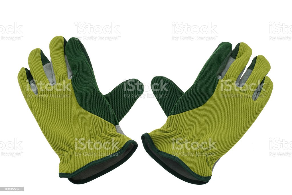 Gardening Gloves royalty-free stock photo