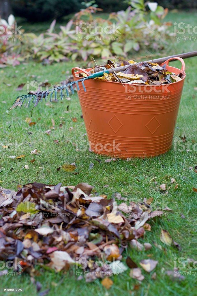 Gardening in autumn stock photo