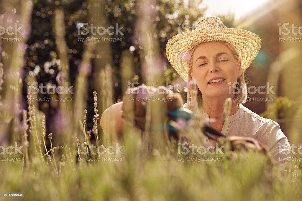 Gardening is a labor of love stock photo
