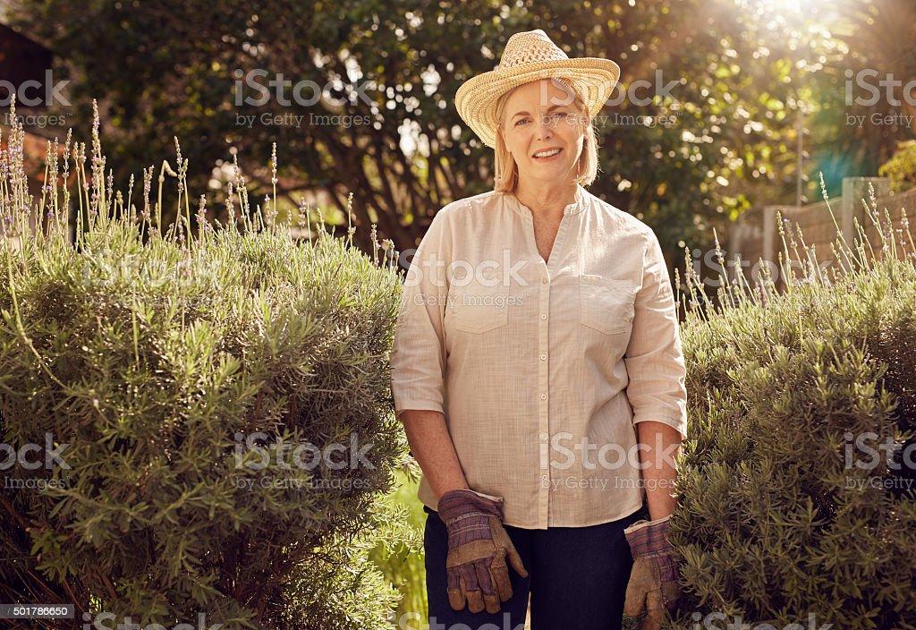 Gardening is exterior decorating stock photo