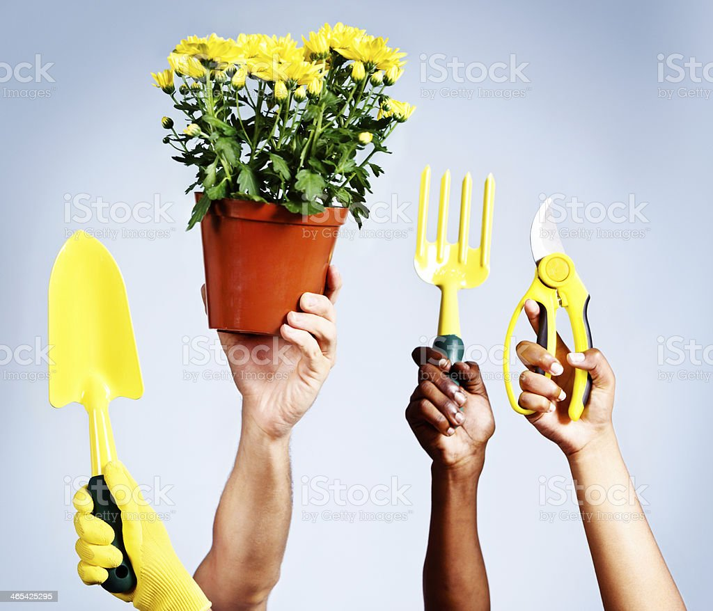 Gardening is fun and a healthy hobby! royalty-free stock photo