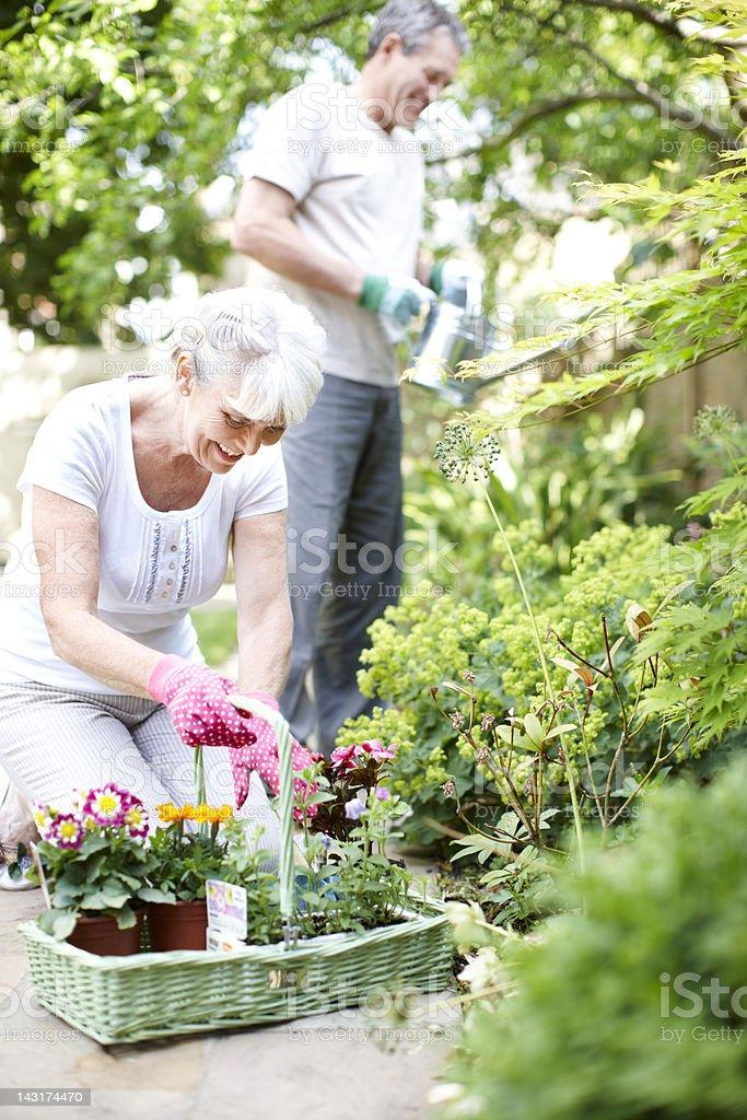 Gardening love royalty-free stock photo