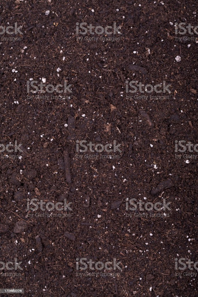 Gardening(XL) royalty-free stock photo