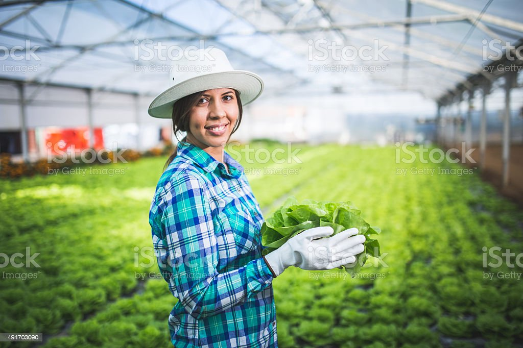 Gardening stock photo