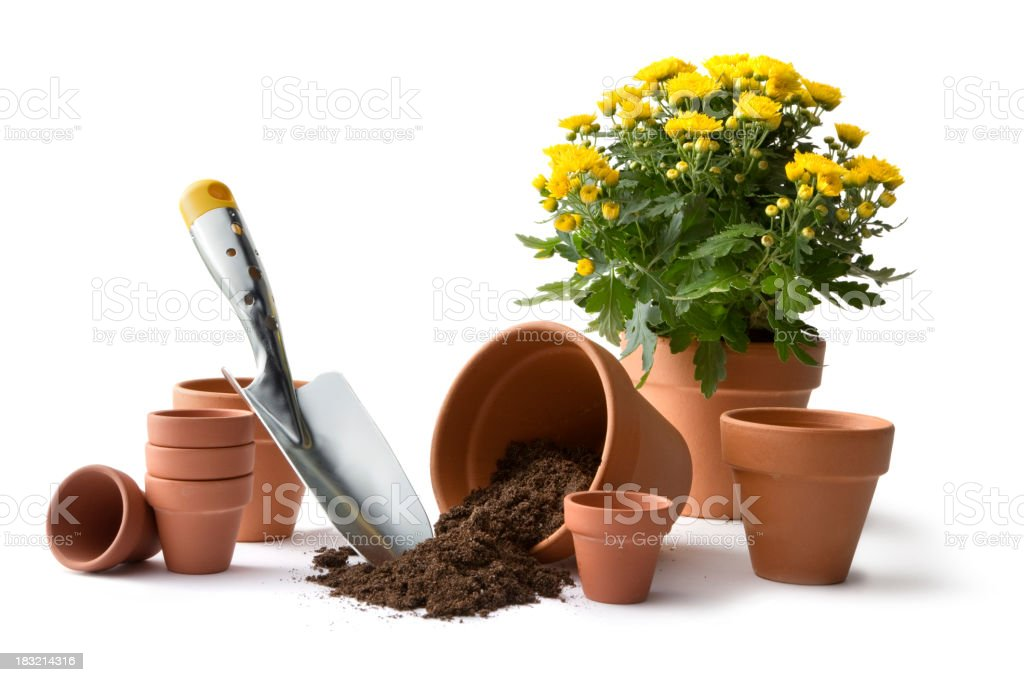 Gardening: Pots and Plant royalty-free stock photo