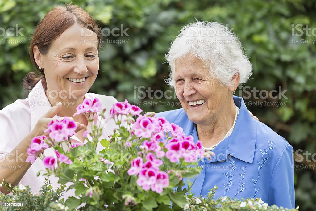 Gardening - senior woman with flowers stock photo