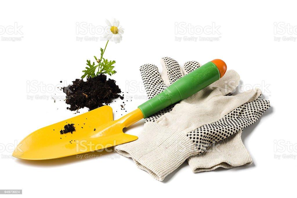 gardening shovel and gloves stock photo