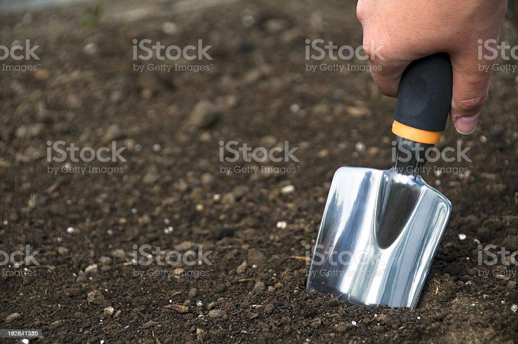 Gardening Shovel stock photo
