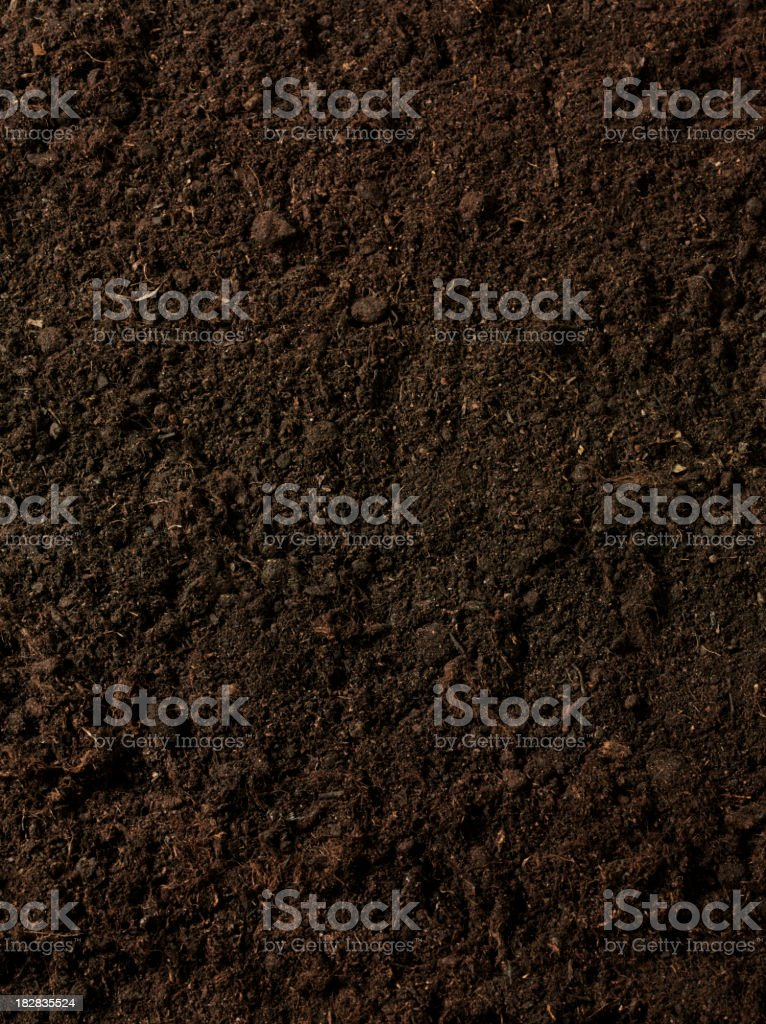 Gardening Soil stock photo