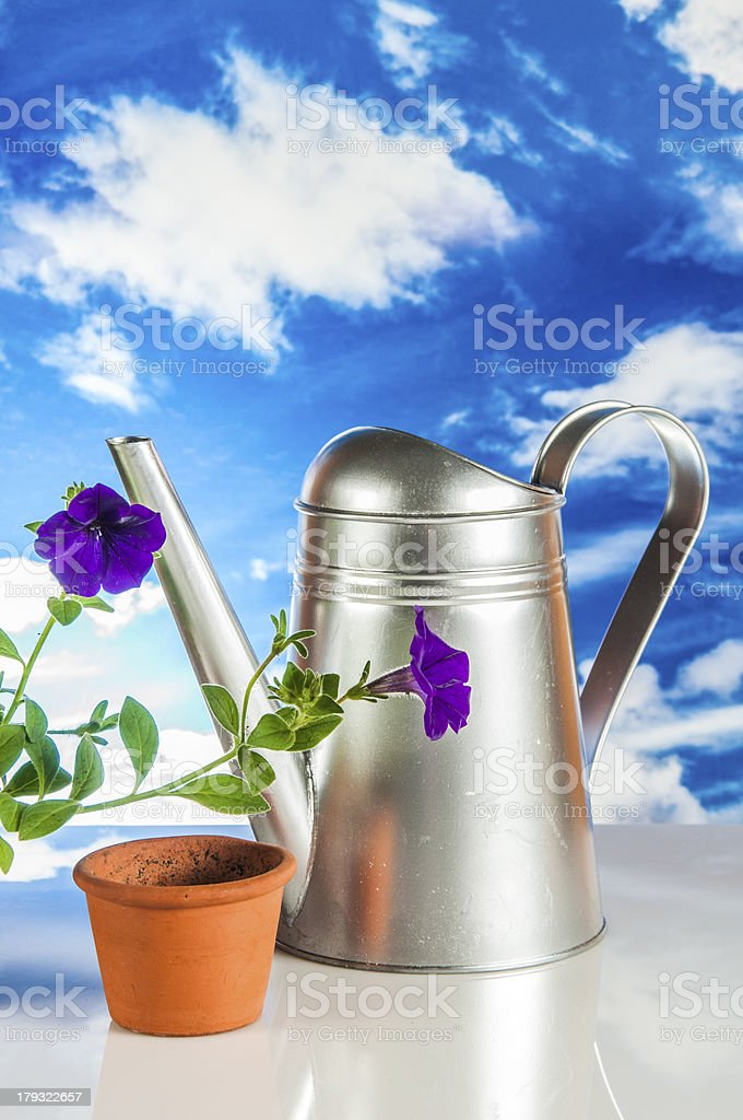 Gardening theme with hard light and saturated colors royalty-free stock photo