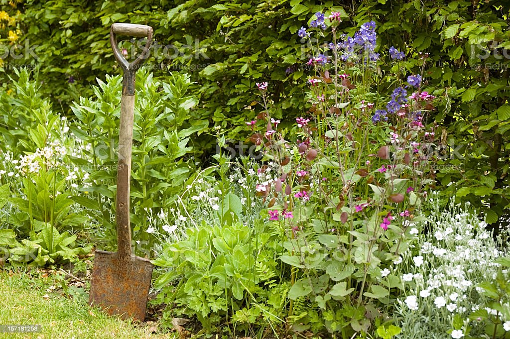 Gardening Time stock photo