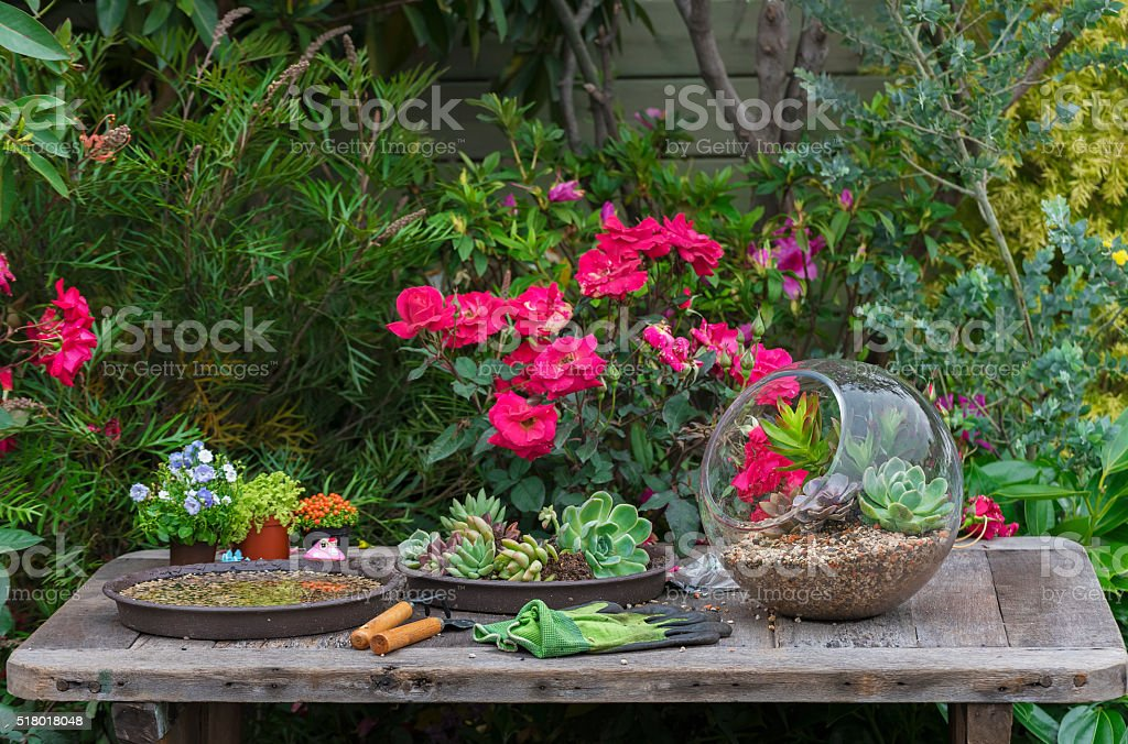 Gardening tool in garden stock photo