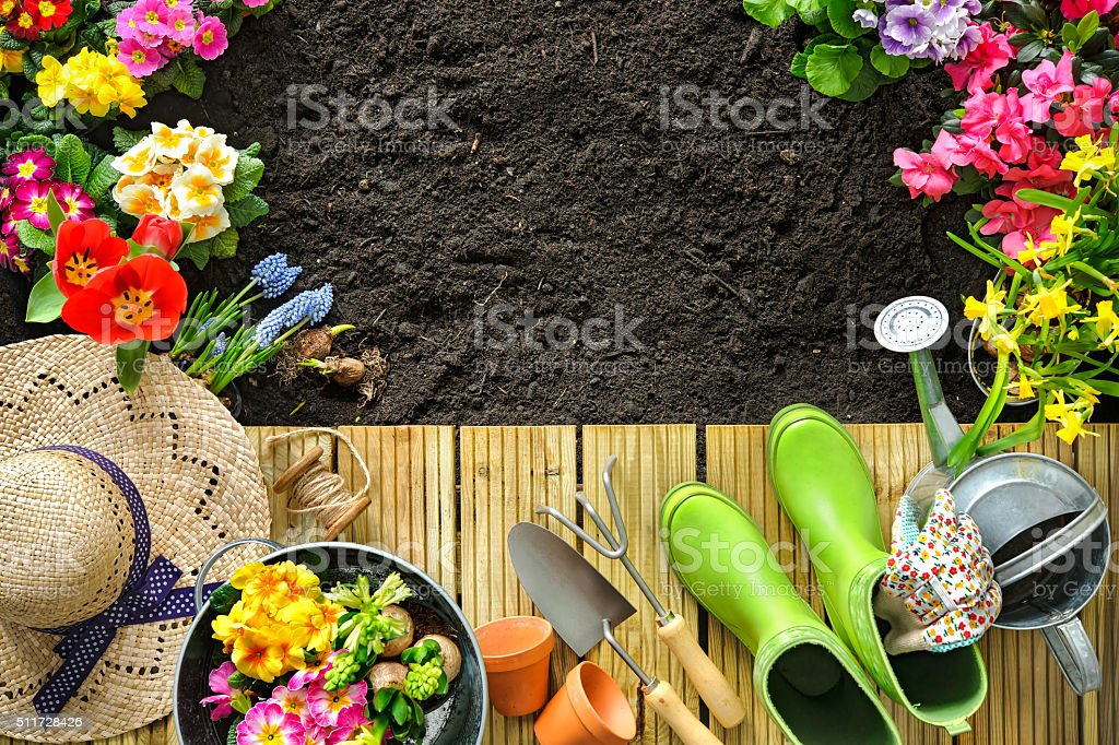 Gardening tools and flowers on the terrace stock photo