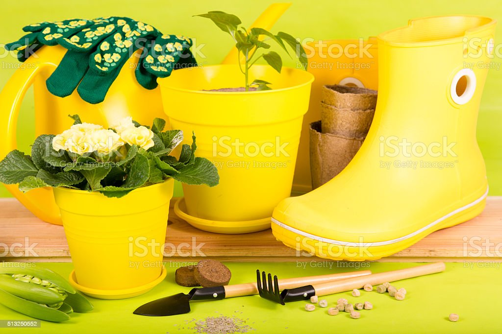 gardening tools and rubber boots yellow stock photo