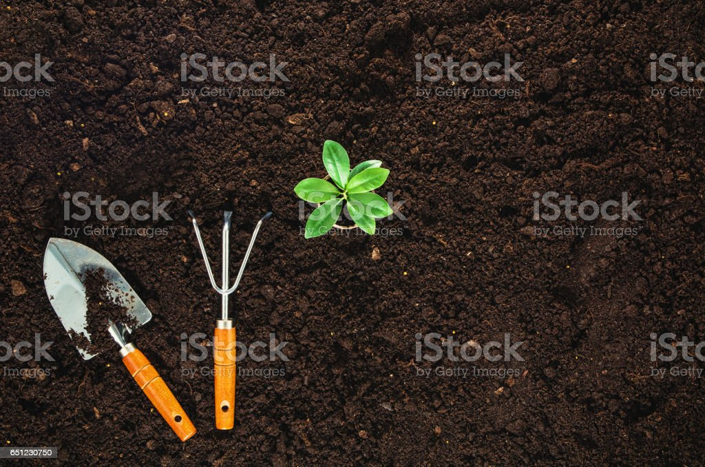 Gardening tools on garden soil texture background top view stock photo