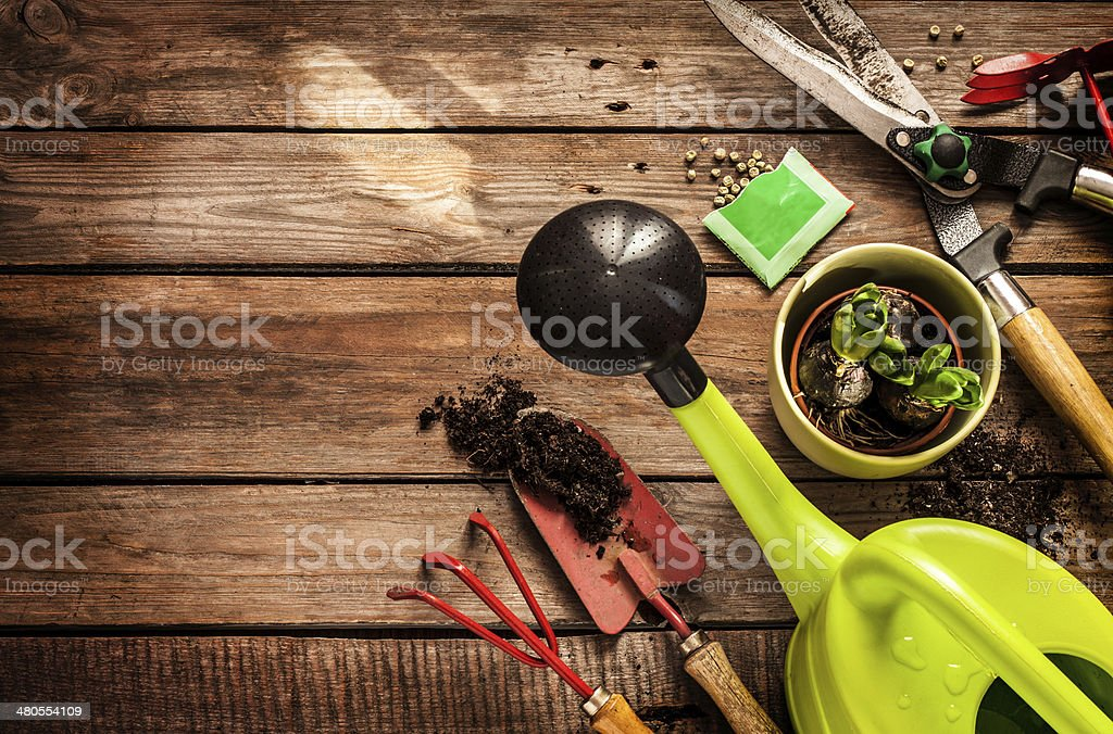 Gardening Tools On Vintage Wooden Table   Spring Stock Photo